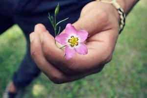 Man holding wildflower