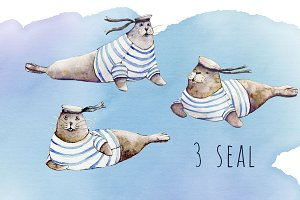 Seals watercolor