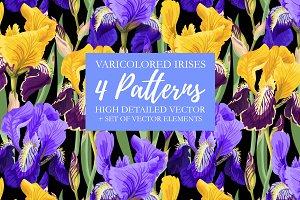 Iris Patterns