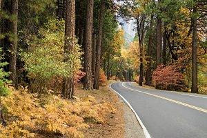 Yosemite scenic road