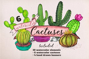 6 Watercolor Cactuses