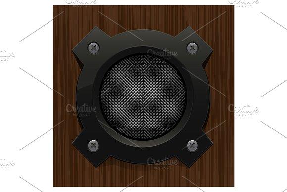 Audio Loud Speaker