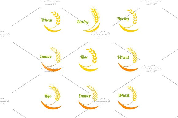 Vector wheat ears icons set. in Illustrations
