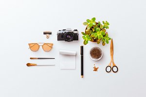 Knolling Camera Sunglasses Succulent