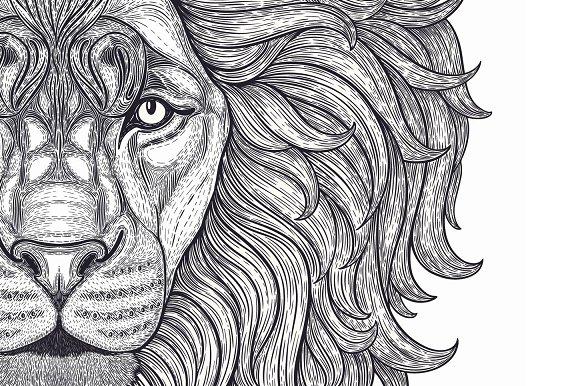 Outline Vector Lion Head