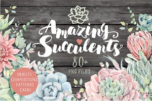 AMAZING SUCCULENTS Watercolor set