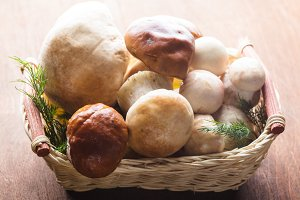 Ceps in the basket