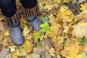 Boots and leaves at fall