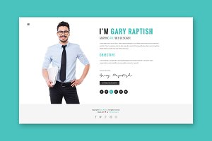 Raptish - vCard WordPress Theme