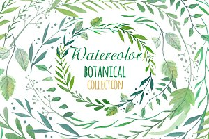 Watercolor Botanical Clipart