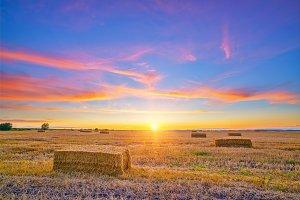 Rural autumn landscape at sunset