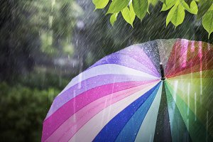 Colorful umbrella in rainy day