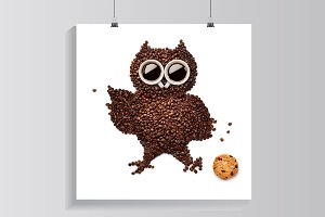 Owlet with cookie.