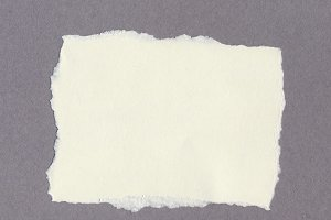 blank tag label parchment