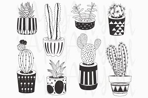 Hand draw Chalkboard Cactuses potted