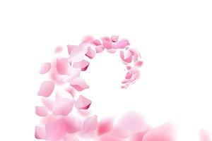Sakura falling petals flow