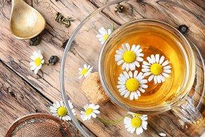 Herbal tea with fresh chamomile