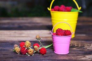 Ripe red raspberry in a bucket