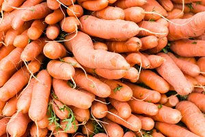Freshly harvested carrots at the market