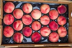 Fresh white peaches at the farmers market