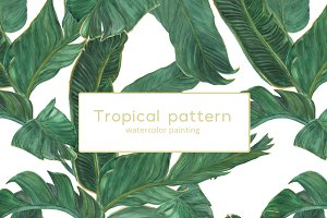 Palm tree leaves patterns