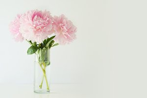 Pink Peonies 2