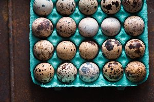 Quail eggs in the container on the old metal background top view