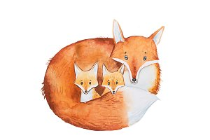 Drawing of cute fox family, mother and two fox-cubs