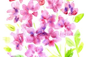 Watercolor vintage summer blooming bouquet