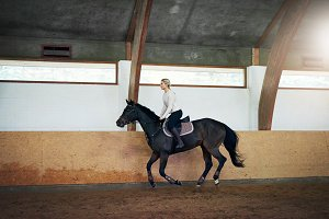 Woman training her brown horse in horseback