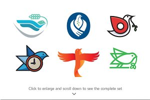 6 Best Bird Logo Template