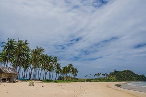 Palm Trees on Nacpan Beach on Sunny Day. El Nido, Palawan, Philippines