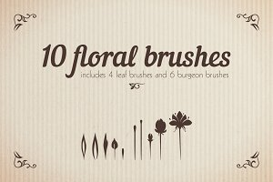 Floral Brushes Illustrator Set