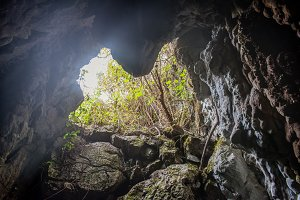 Entrance to abandoned heart cave