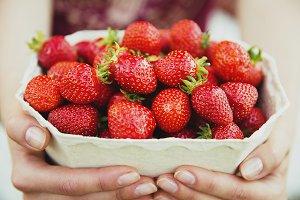 Strawberries in woman hands