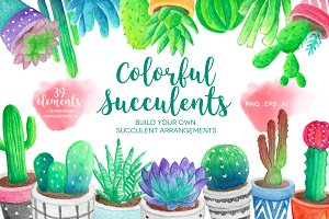 Watercolor Succulents & Cacti
