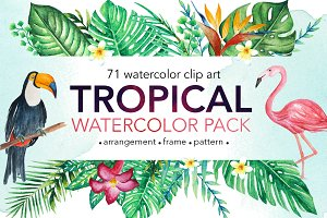 TROPICAL Watercolor clip art pack