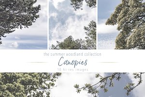 Summer Woodland ~ Canopy Set