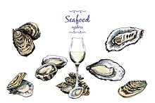 Oysters. Set of graphic illustration