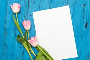pink tulips on a blue wooden board