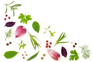 Fresh spices and herbs isolated on white background. Dill parsley basil thyme tartun peppercorns garlic. Top view