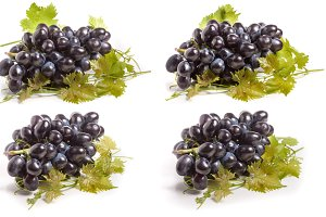 bunch of blue grapes with leaf isolated on white background. Set or collection