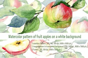 Watercolor illustrations of apples
