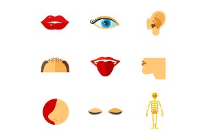 Human face parts icon set