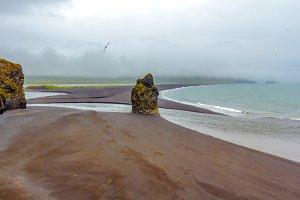 Volcanic sand beach, South Iceland