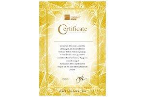 Certificate93