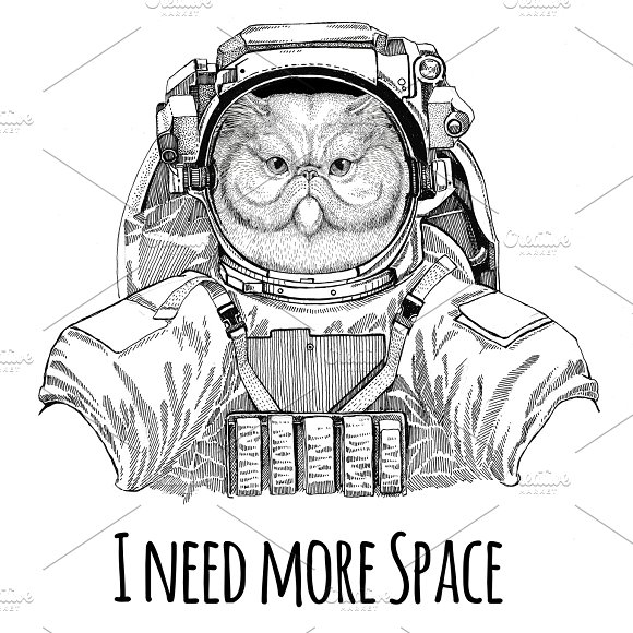 Portrait Of Fluffy Persian Cat Wearing Space Suit Wild Animal Astronaut Spaceman Galaxy Exploration Hand Drawn Illustration For T-shirt