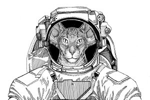 Oriental cat with big ears wearing space suit Wild animal astronaut Spaceman Galaxy exploration Hand drawn illustration for t-shirt