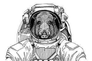 Aper, boar, hog, hog, wild boar wearing space suit Wild animal astronaut Spaceman Galaxy exploration Hand drawn illustration for t-shirt