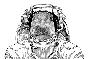 Hippo, Hippopotamus, behemoth, river-horse wearing space suit Wild animal astronaut Spaceman Galaxy exploration Hand drawn illustration for t-shirt